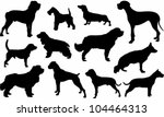 Stock vector dog silhouette 104464313