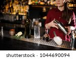 glass  bottle and other barman... | Shutterstock . vector #1044690094