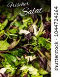 Small photo of German text frischer Salat means Fresh salad with mixed greens lettuce arugula mesclun mache close up Healthy food meal