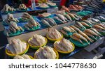 food products sold on the... | Shutterstock . vector #1044778630