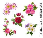 set of aster flowers... | Shutterstock . vector #1044783664