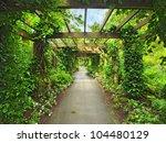 Pergola Passage In The Garden ...