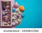 top view  seashells and... | Shutterstock . vector #1044812560