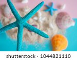 close up of seashells and... | Shutterstock . vector #1044821110