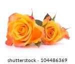 Two Orange Roses  Isolated On...