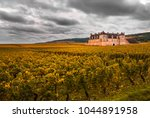chateau with vineyards in the... | Shutterstock . vector #1044891958