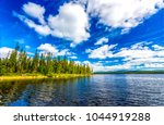 forest river in sunny day... | Shutterstock . vector #1044919288