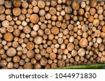 tree trunks cut and stacked | Shutterstock . vector #1044971830
