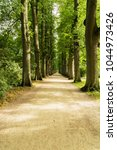 tree lined path | Shutterstock . vector #1044973426