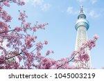 tokyo japan   march 11 2018 ... | Shutterstock . vector #1045003219