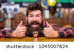 alcohol and fun concept.... | Shutterstock . vector #1045007824