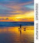 Stock photo silhouette of a man walking with the dogs on a beach at sunset bali island indonesia 1045045003