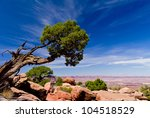 Beautiful Mountains  Tree And...