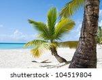 Fantastic Tropical Beach On Th...