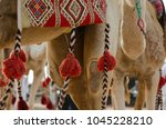 camels with traditional... | Shutterstock . vector #1045228210