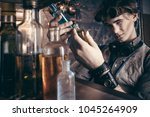 portrait of a mad scientist... | Shutterstock . vector #1045264909