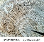 aged rustic wooden surface... | Shutterstock . vector #1045278184