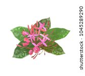 red pink tropical plant ixora... | Shutterstock .eps vector #1045289290