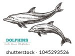 hand drawn vector dolphins.... | Shutterstock .eps vector #1045293526