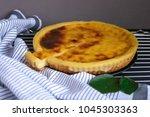parisian flan  french custard... | Shutterstock . vector #1045303363