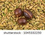 texture of green cardamom pods... | Shutterstock . vector #1045332250