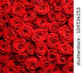 Stock photo red natural roses background 104536253