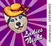 husky dog in wide brimmed hat... | Shutterstock .eps vector #1045386403