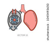 bionic lungs prosthesis color...   Shutterstock .eps vector #1045493650