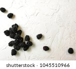 blackberry with the colors of... | Shutterstock . vector #1045510966