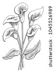 Callas Flower Graphic Black...