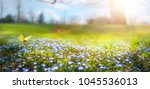 abstract nature spring... | Shutterstock . vector #1045536013