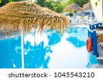 beach sunshades on the southern ... | Shutterstock . vector #1045543210