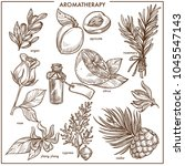 aromatherapy natural... | Shutterstock .eps vector #1045547143