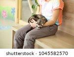 cute sleeping polecat in... | Shutterstock . vector #1045582570
