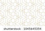 seamless linear pattern with... | Shutterstock .eps vector #1045645354