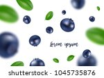 background of the blueberries... | Shutterstock .eps vector #1045735876