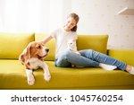 beagle  turkish angora and... | Shutterstock . vector #1045760254