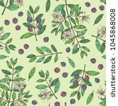 seamless pattern with myrtus ... | Shutterstock .eps vector #1045868008
