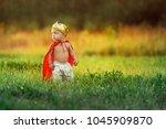 little child prince summer day... | Shutterstock . vector #1045909870
