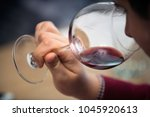 tasting red wine | Shutterstock . vector #1045920613