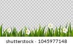 green grass  spring flowers...   Shutterstock .eps vector #1045977148