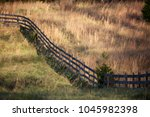 Small photo of Di-angular curving wooden fence with green grass field on one side and tan bushy field on other side of farm field, Calvert County, Maryland, USA