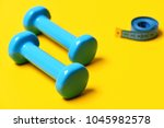 dumbbells and twisted measuring ... | Shutterstock . vector #1045982578