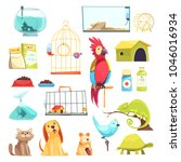 pet shop set with domestic... | Shutterstock .eps vector #1046016934