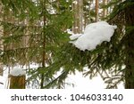 winter landscape with pine... | Shutterstock . vector #1046033140