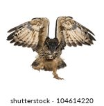 Stock photo eurasian eagle owl bubo bubo years old flying against white background 104614220