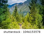 hiking at andes mountains at... | Shutterstock . vector #1046153578