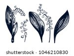 lily of the valley big set.... | Shutterstock .eps vector #1046210830