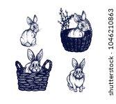 bunny  rabbit. easter symbols...   Shutterstock .eps vector #1046210863