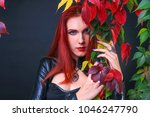 beautiful red head gothic girl... | Shutterstock . vector #1046247790